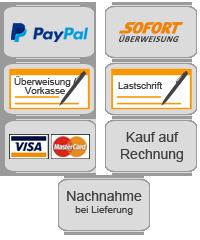 PayPal, Sofort, Vorkasse, Lastschrift, Kreditkarte, Rechnung
